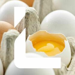 Leipurin Long Life, munamassa 3x5 kg